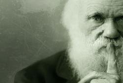 Дарвин и маркетинг