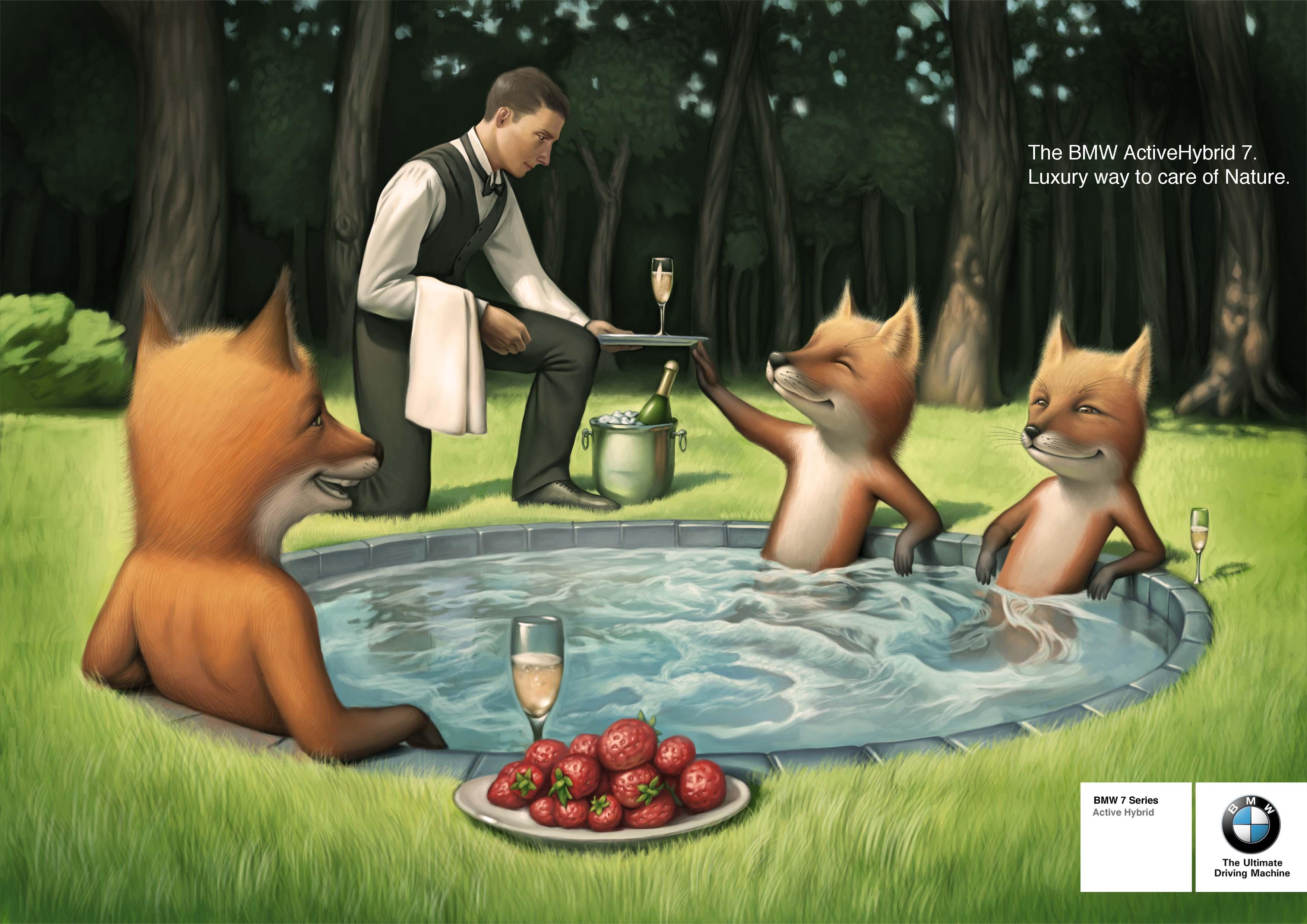 bmw лисички